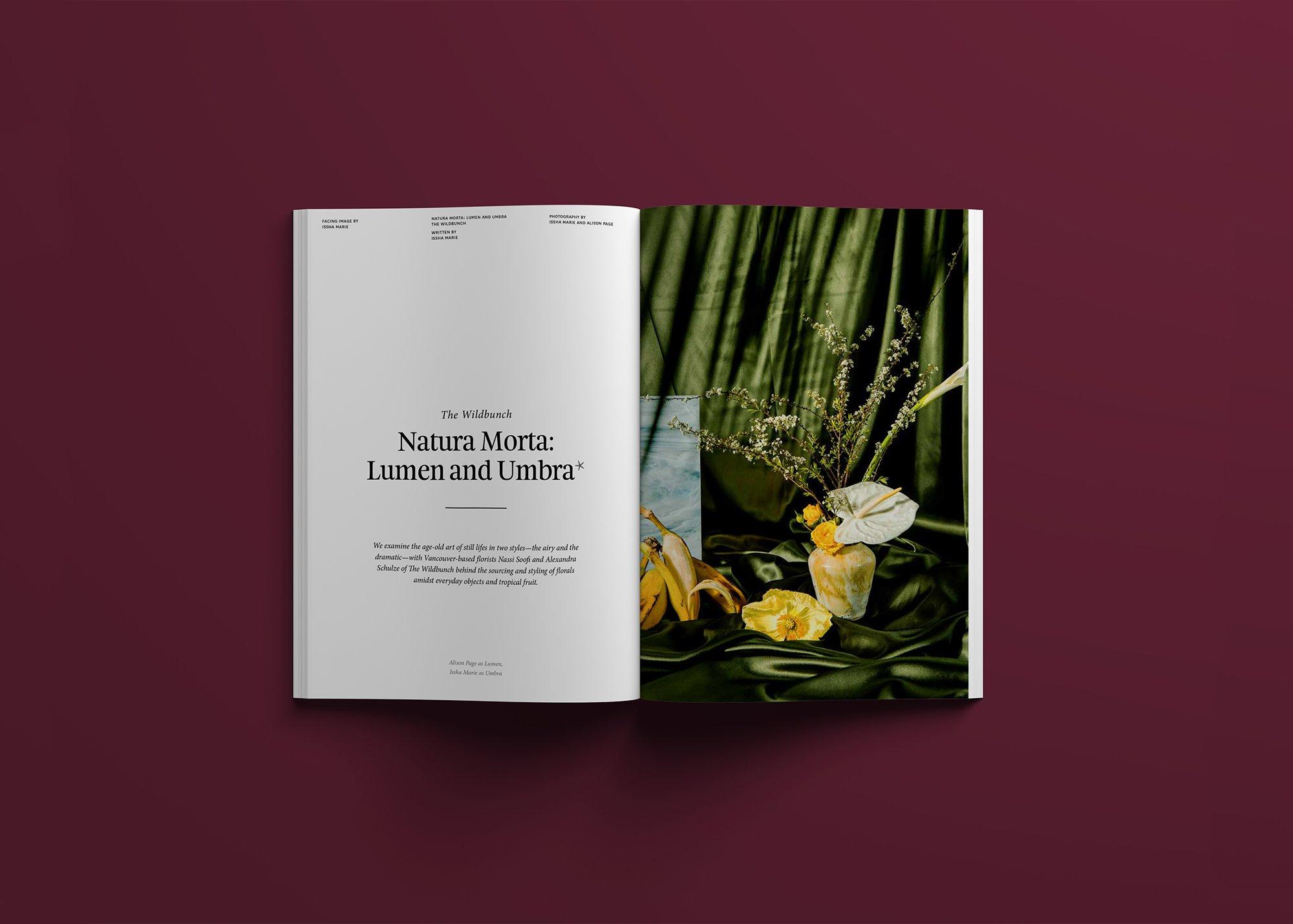 Editorial Design - Colour Designed by Monograph&Co.